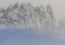 В районах и столице Якутии ожидается сильный ветер