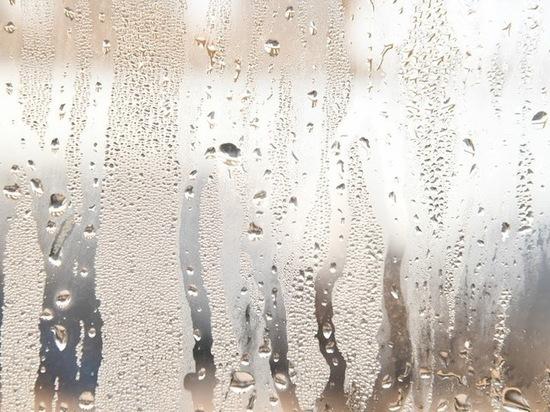 После ясных дней в Волгоград пришли дождливые выходные