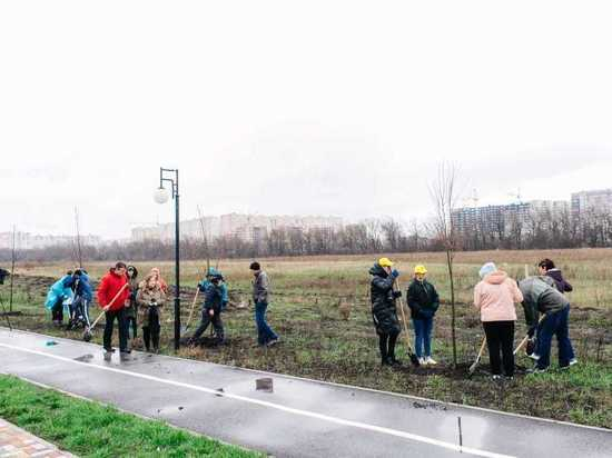 Гагаринский сад заложили на юго-западе Ставрополя