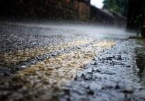 18 апреля в Смоленской области будет тепло, но дождливо