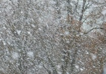 Резкое похолодание придет в Алтайский край на следующей неделе
