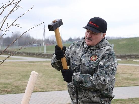 Белорусская оппозиция прокомментировала заявления спецслужб Белоруссии и России, накануне сообщивших о попытке госпереворота и задержании лиц, якобы готовивших покушение на Александра Лукашенко