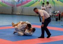 90 российских спортсменов сошлись на турнире по джиу-джитсу в Благовещенске