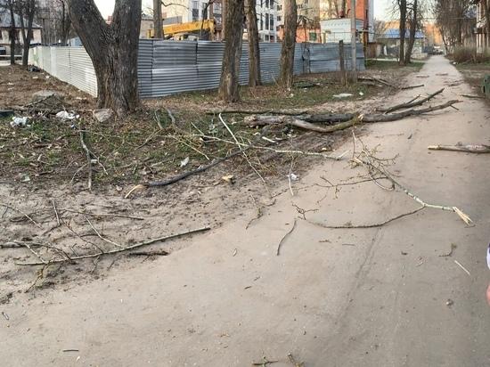 «Мама, дерево падает, беги»: в Рязани пенсионерка получила травму головы, сажая цветы во дворе