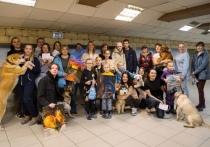Благотворительная фотосессия, розыгрыш ценных призов и сертификатов, танцы с собаками, детский смех, теплое общение, объятия с добродушными четвероногими моделями, чай со сладостями - участникам удалось создать теплую атмосферу и собрать за два часа 12 тысяч рублей в помощь бездомным хвостикам