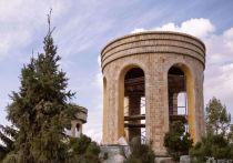 В кемеровском Парке Ангелов из-за болезни пожелтели деревья