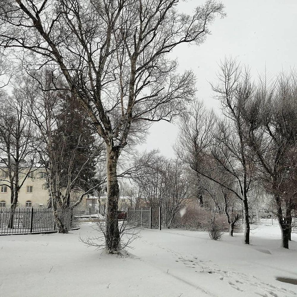 Апрельская метель ударила по Сахалину
