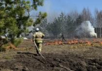 Ивановцев предупреждают: из-за пала травы можно «погореть»