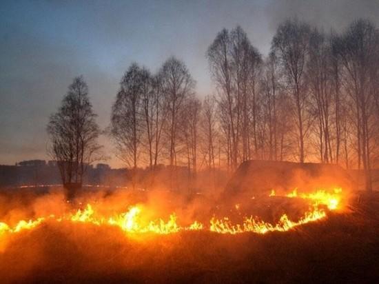 О вреде многолетнего мифа рассказали жителям Серпухова