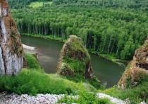 Москва подтвердила, что хариус в реках Хакасии погиб из-за выбросов рудника Коммунар