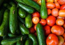 В середине апреля, как это обычно бывало, отечественные овощи из открытого грунта в этом году в России не появятся
