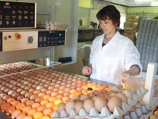 Правительство готовится расширить перечень продуктов питания, попадающих под административное регулирование цен