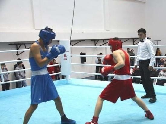 Калмыкию на чемпионате России представят два боксера