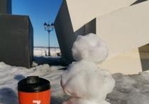 Ямальцы смастерят снеговиков-экологов и получат за креатив пледы и куртки