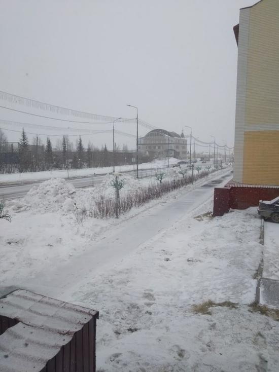Подрядчику придется восстановить сломанные при уборке снега саженцы в Лабытнанги