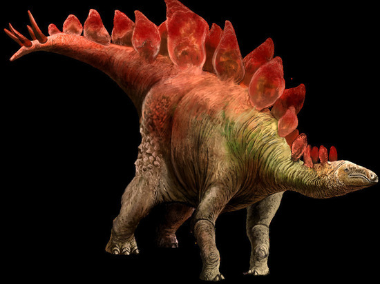 Впервые в истории палеонтологии найден след мини-динозавра, который был размером с кошку