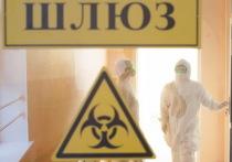 COVID-19 в Ивановской области: снова 5 умерших