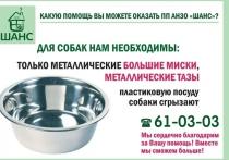 Псковские зоозащитники просят помочь с покупкой тазов, кастрюль и мисок для собак