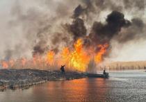 Пожары в Прибалхашье: последствия катастрофические