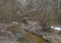 Власти Ижевска обязали ликвидировать незаконно складированные нефтепродукты с берега речки Карлутки
