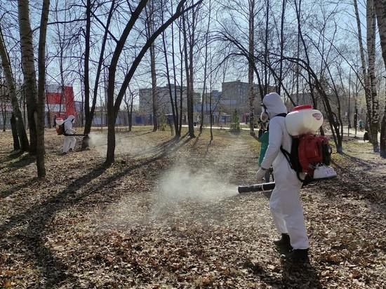 В Нижнем Новгороде началась противоклещевая обработка общественных пространств