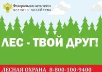 Особый противопожарный режим в Ивановской области будет введен с 30 апреля