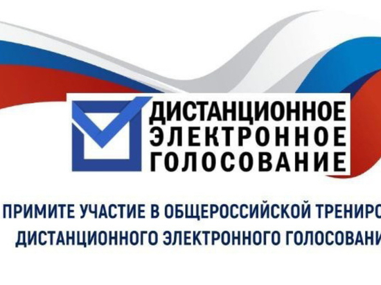 В Нижегородской области можно заявиться на тестирование системы электронного голосования