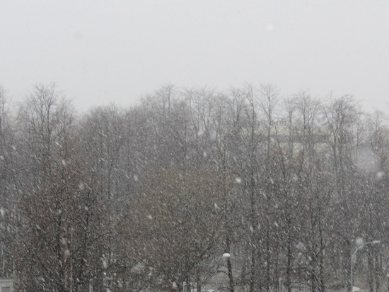 Субботник в парке Петрозаводска отменили из-за непогоды