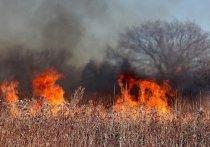 Жителей Серпухова призвали не наносить ущерб здоровью и экологии