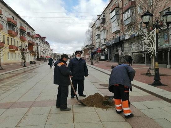 В месячнике по благоустройству Брянска участвуют осужденные photo