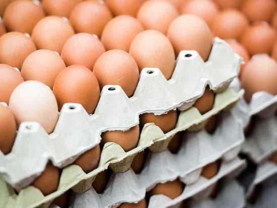 Нижегородцы смогут купить яйца по ценам производителей