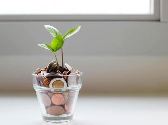 Экстрасенс Мехди Вафа назвал три способа привлечь деньги в жизнь