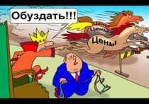 Антимонопольный комитет предложил властям Хакасии сдерживать рост цен