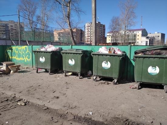 Областной суд признал незаконным временный норматив образования мусора