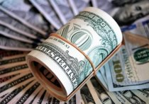"""Российский предприниматель Олег Дерипаска предрекает Соединенным Штатам """"квазидефолт"""", под которым, насколько можно судить, понимается выборочный отказ от долговых обязательств"""