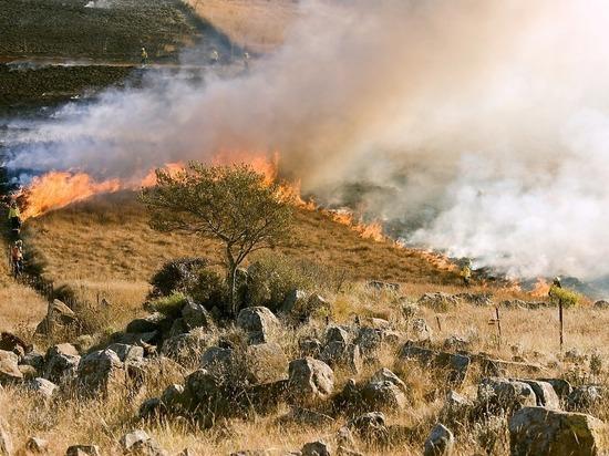 Особый противопожарный режим ввели в 12 районах Красноярского края с 23 апреля