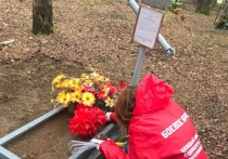 Смоленские добровольцы преодолевали пешком бездорожье и броды, чтобы привести в порядок могилу героя