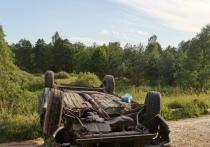 Житель Брянской области спьяну угнал под Калугой машину и угробил на ней друга