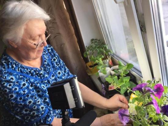 В Нововятске продолжается выдача семян от Союза садоводов России