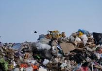 Новый полигон для сбора мусора построят в Новом Уренгое