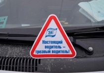 ГИБДД проведет в Смоленске «сплошные проверки» утром в понедельник