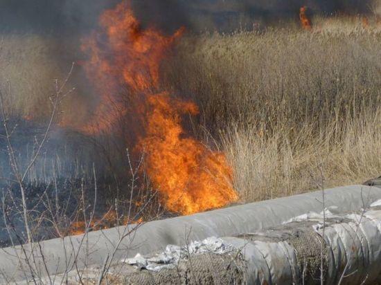 В Омске напротив автовокзала снова сильно горит сухая трава (ФОТО)