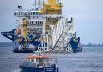 То, чего не удалось добиться политикам из Вашингтона с их санкциями, пытаются достичь немецкие экологи - а именно, остановить строительство российского экспортного газопровода «Северный поток-2» (СП-2)