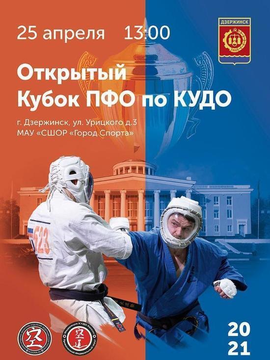 В Дзержинске пройдет открытый Кубок ПФО по кудо