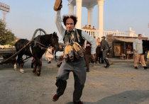 НА ММКФ представили «Последнюю «Милую Болгарию» - фильм из камыша