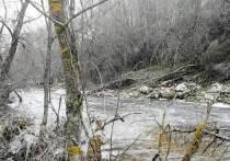 В реке Калужской области выловили утопленника