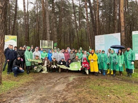 Из Калужского бора вывезли 200 мешков мусора