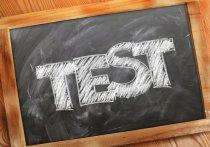 «Право имею в Германии» : Где можно сдать тест по немецкому, если Гете-институт не принимает