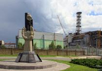 Версия теракта как причины аварии на Чернобыльской АЭС рассматривалась очень серьёзно, любые сведения перепроверялись самым тщательным образом, были привлечены специалисты разного профиля