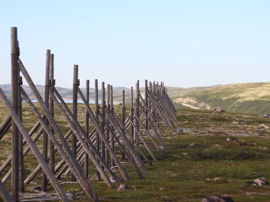 ПОРА провел круглый стол «Кадровое обеспечение Арктического региона»